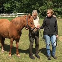 Harmonisk Horsemanship