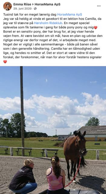 Anbefaling HorseMama